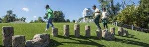 Artificial Grass Field Use