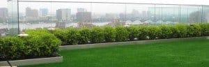 Rooftop Artificial Grass