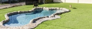 Snug Pet Resort Artificial Grass