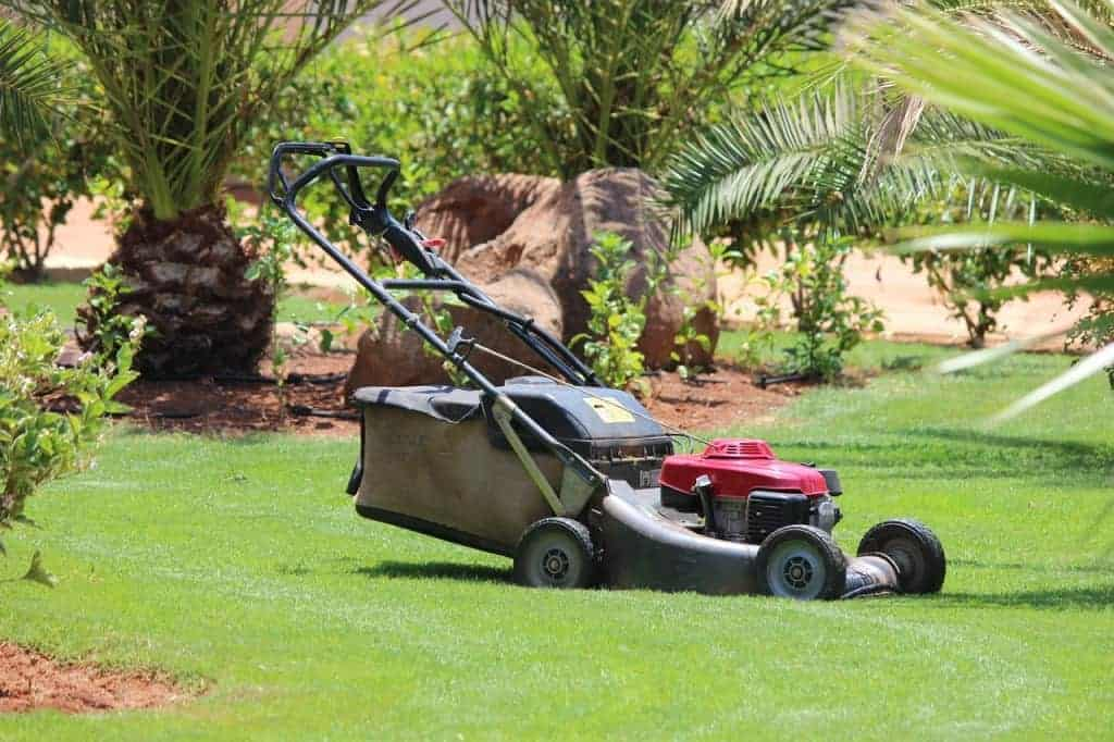 Forget the lawn mower with synthetic turf