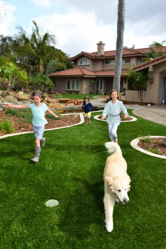 Los Angeles Synthetic Turf