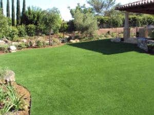 environmentally-friendly landscape design