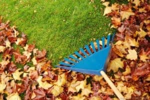 artificial grass maintenance tips