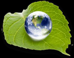 EasyTurf artifical turf is environmentally friendly